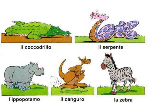 Italian-animal-names