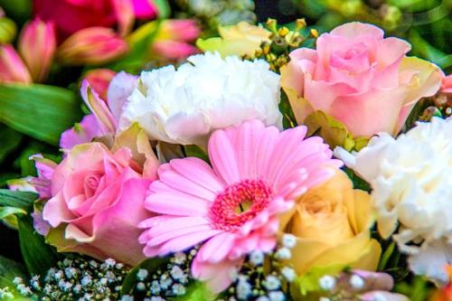 Italian-flower-names